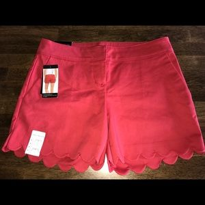The Limited Scalloped Tailored Shorts Size 4